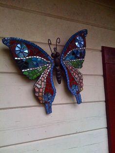 prachtige vlinder