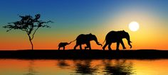 Win an African Safari Holiday! Nature Pictures, Cool Pictures, Safari Photo, African Art Paintings, Silhouette Painting, Elephant Love, Photos Voyages, Animal Sketches, African Safari
