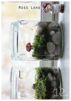 advent craft : moss landscape