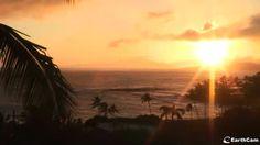 Poipu Beach, Kauai, Hawaii : Live - EarthCam