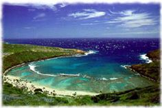 Hanauma Bay, Oahu    We snorkeled all through here and saw lots of turtles, fish, and an octopus!