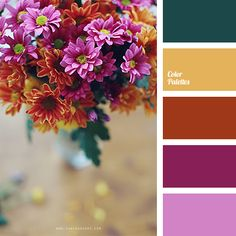 Free collection of color palettes ideas for all the occasions: decorate your house, flat, bedroom, kitchen, living room and even wedding with our color ideas | Page 104 of 320.