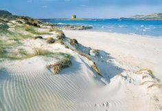 """La spiaggia de """"La Pelosa"""" #Stintino #Sardegna"""