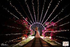 Bodas - Decoración Bodas en Cali, Entremanteles, Organización de Bodas, Decoración Matrimonios Campestres y Eventos Sociales