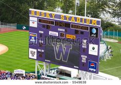 university of washington huskies - Google Search