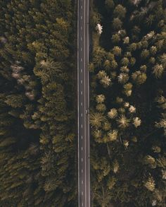 Hitting the road tomorrow for A/W 17 for a certain brand. See ya in the morning!  #1924us #go #explore #travel #life #adventure #road #drone #places #style #venture #trees #forest #fashion