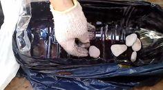2. Prepara el semillero Primero debes recortar un costado de la botella plástica para que quede un agujero como el que se ve en la fotografía. Luego hacer un par de orificios para que el agua drene y coloca algunas piedras en el fondo
