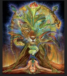 Ayahuasca woman graphic - Everything BeckyEverything Becky