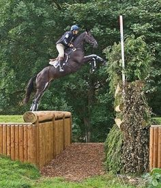Clayton Fredericks on Brookleigh jumping the Townsfield Flyer at Blenheim Horse Trials in 2010.  More guts than I have