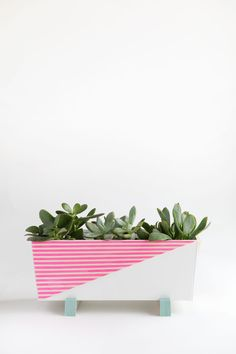 DIY MODERN INDOOR PLANTER