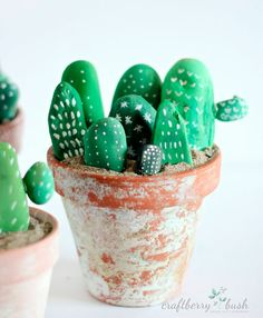 macetas-con-cactus-y-flores