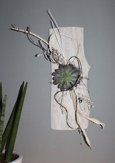 WD53 – Außergewöhnliche Wanddeko! Altes Eichenbrett, weiß gebeizt natürlich dekoriert mit einer künstlichen Sukkulente! Preis 49,90€