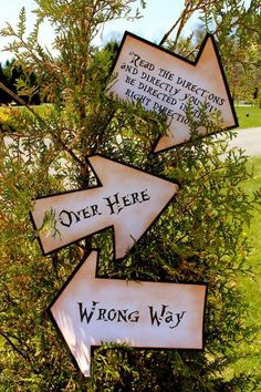 Vintage Inspired Alice in Wonderland Directional Signs - SET OF 3 SIGNS