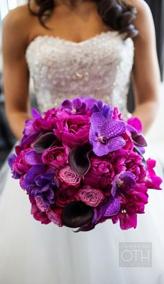 Vibrant Purple Wedding Boquet of Peonies & Orchids ! Johnston omg peonies and purple and pink it's my wedding bouquet Purple Wedding Bouquets, Spring Wedding Flowers, Wedding Colors, Magenta Wedding, Bridal Bouquets, Flower Bouquets, Mod Wedding, Dream Wedding, Trendy Wedding