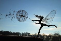 Today we made collection of Robin Wight's dynamic fairy wire sculpture which seems as they are dancing with dandelion. Robin Wight, Fantasy Wire, Foto Fantasy, Sculptures Sur Fil, Art Sculpture, Wire Sculptures, Sculpture Garden, Small Sculptures, Outdoor Sculpture
