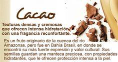 #Cacao #natura #ekos