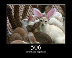 Easter Kitty – Cat memes – kitty cat humor funny joke gato chat captions feline laugh photo easter holiday humor Source by Funny Animal Pictures, Dog Pictures, Funny Animals, Cute Animals, Funny Images, Hilarious Pictures, Animal Jokes, Funniest Animals, Funny Easter Pictures
