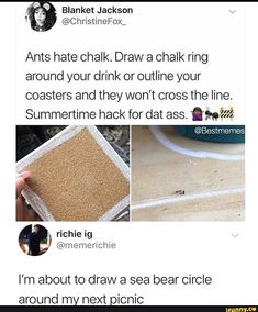 Picture memes iFunny Picture memes iFunny Judith K Hacks Ants hate Chalk Draw a Chalk ring around your drink or nbsp hellip Board circle Stupid Funny Memes, Funny Relatable Memes, Haha Funny, Funny Stuff, Hilarious, Simple Life Hacks, Useful Life Hacks, Summer Life Hacks, Girl Life Hacks