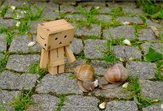 Danbo meets snails :) | Flickr: partage de photos!