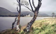 """Braveheart's Legacy"" Features Scotland's Breathtaking Highlands - My Modern Met"