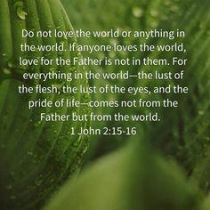 1 John 2:15,16