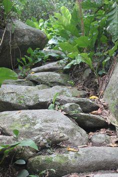 The road to Pueblito ruins in the Tayrona National Park (Santa Marta). Colombia.