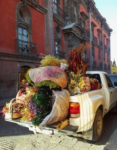 Dried flower seller getting ready to set up her sidewalk shop, San Miguel de Allende, Mexico