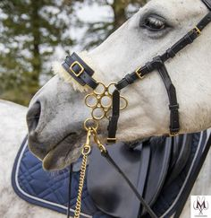 Hackamore flower wheel in gold and black noseband with fur, horse tack, bitless horse riding, black leather Black Unicorn, Unicorn Horse, Beautiful Horse Pictures, Beautiful Horses, Pony Saddle, Unicorn Wedding, Horse Costumes, Saddle Pads, Gold Flowers