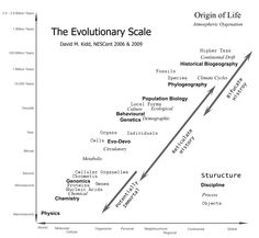 The Evolutionary Scale