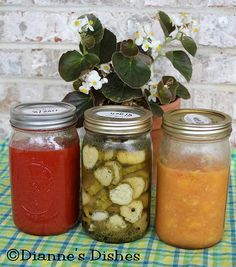 Canning, Preserving and Freezing, Oh My! (And a Simple Yet Fabulous Recipe for Refrigerator Dill Pickles!) #canning #pickles #harvest #veggies #fruit