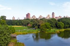 View from Belveder castle in Central Park
