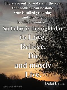 """There are only two days in the year that nothing can be done. One is called yesterday and the other is called tomorrow, so today is the right day to love, believe, do and mostly live."" Author: Dalai Lama"