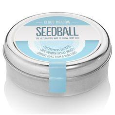 Wedding Favours - Seedball Cloud Meadow
