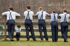 Stand The Wall: The Amish In America Commit Their Vote To Donald T...