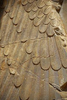 Iran Persepolis _DSC6096 | Flickr - Photo Sharing!
