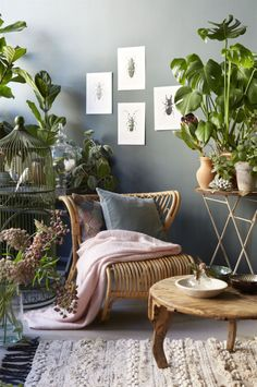 A natural sitting space with rattan furniture and plants