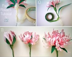 Paper Crafts : DIY Paper Flowers