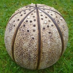Full Stop, Urchin Pod