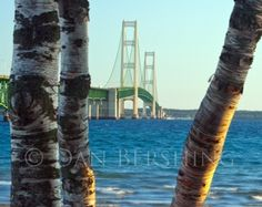 """8"""" x 12"""" gallery mounted bevel edged metallic print of a scenic view of the Mackinac Bridge located at the Straits of Mackinac between Lake Michigan and Lake Huron. The bridge connects Michigan's Upper and Lower Peninsula's and is the 3rd longest suspension bridge in world.    The photograph is finished and ready to hang on your wall. With the mounting and finishing,   $75"""