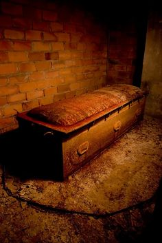 A solitary casket remained in a corner of the pitch black vault. It was no ordinary casket however; it was made of steel, and had eighteen or so clamps on the lid. It appeared to be a special. Pena Capital, Old Cemeteries, Graveyards, Cemetery Art, After Life, Abandoned Buildings, Abandoned Places, Memento Mori, Casket