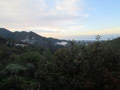 Raccontare un paese: si va all'oliveto...5 foto