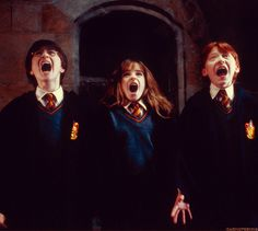 "The golden trio gets their first look at ""Fluffy"" ~ Harry Potter and the Sorcerer's Stone"