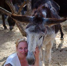 Courtesy: Agia Marina Donkey Sanctuary, Heraklion - Crete (Greece).