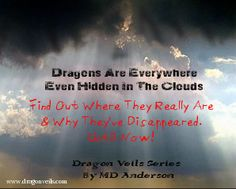 See the two dragon shapes in this pictured? www.dragonveils.com