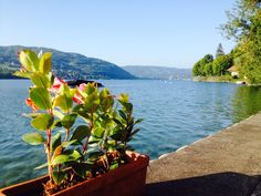 Découvrez le Lac de Paladru #holidays #lac