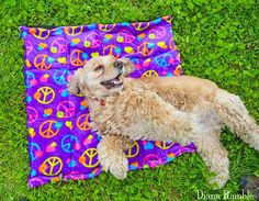 DIY Doggie Cooling Pad    Read more -