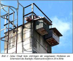 http://nordhausen.nabu-thueringen.de/dohlen_orni.html