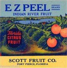 Fort Pierce Florida E Z Peel Orange Citrus Fruit Crate Label Art Print