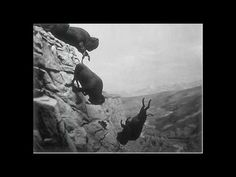 """Delia Derbyshire - """"Falling"""", from The Dreams (1964) - YouTube"""