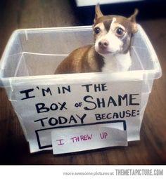 Box Of Shame…